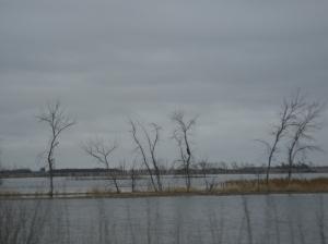 Flooding, South Dakota, April 2009