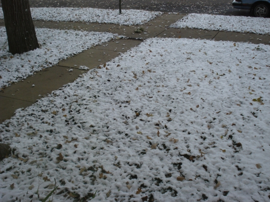 Snow in central Minnesota, October 10, 2009.
