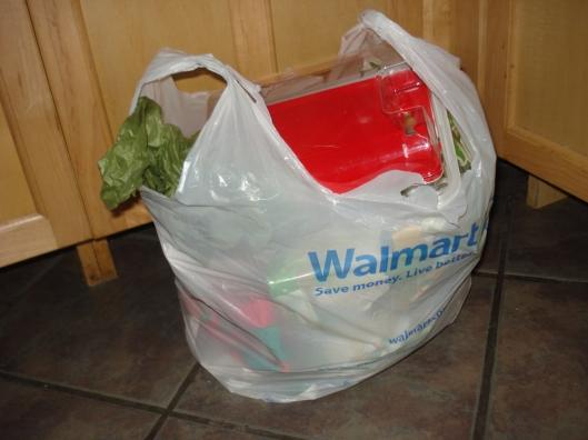 Trash after Christmas