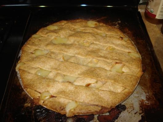 Big Ass Chicken Pot Pie