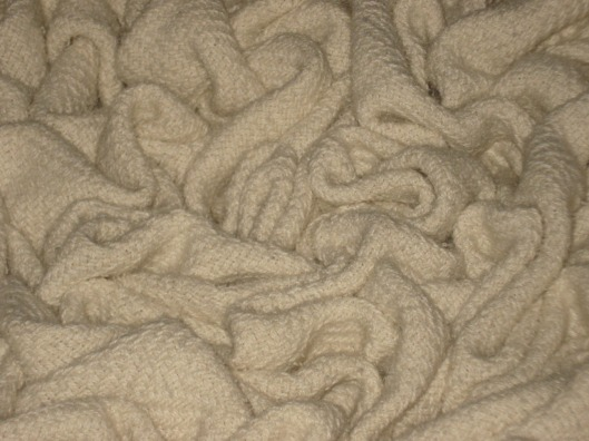 Blanket brain close-up