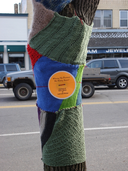 Knitting Bomb 4, Little Falls, MN, November 15, 2010.