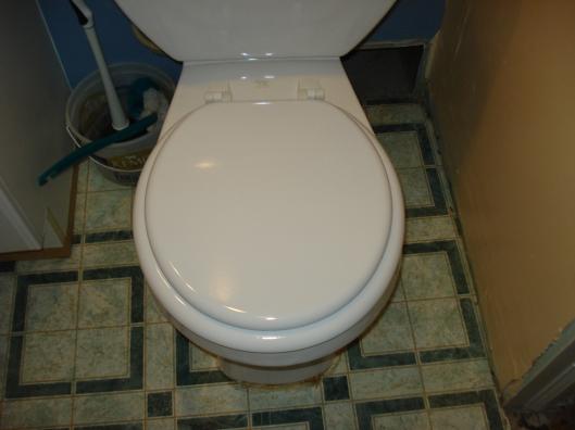 New toilet seat, December 2010