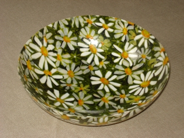 Floral bowl, daisies on a field of green.
