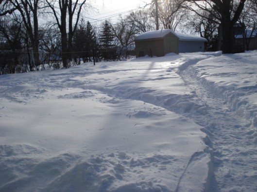 Snow paths in the yard