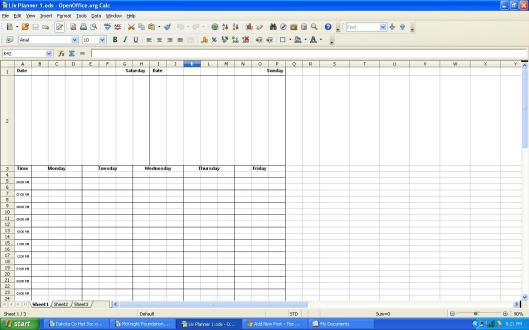 Planner Page, a screen shot that shows the spreadsheet grid.